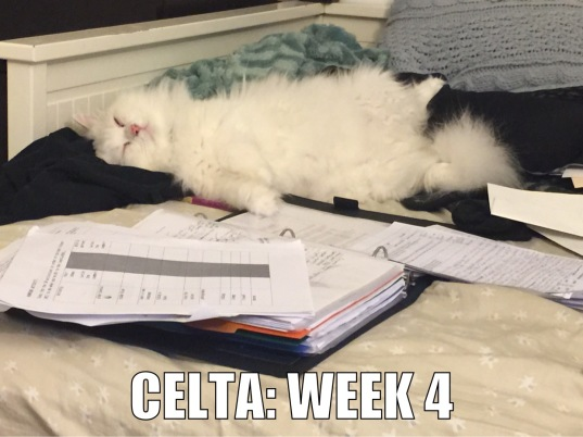 CELTA Week 4
